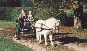 Polsterstueberl-Hinterstoder-Kinderparadies-Streichelzoo-3